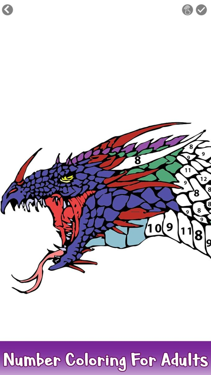 Dragons Color by Number: Adult Coloring Book