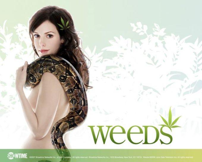 Fond d'écran Weeds (2)