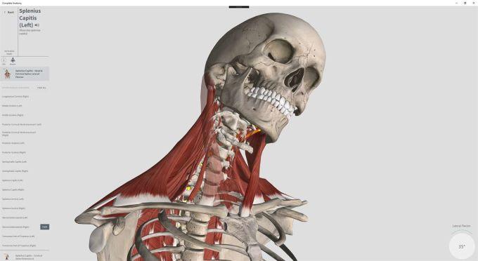 Complete Anatomy