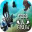 Feed And Grow Fish Simulator