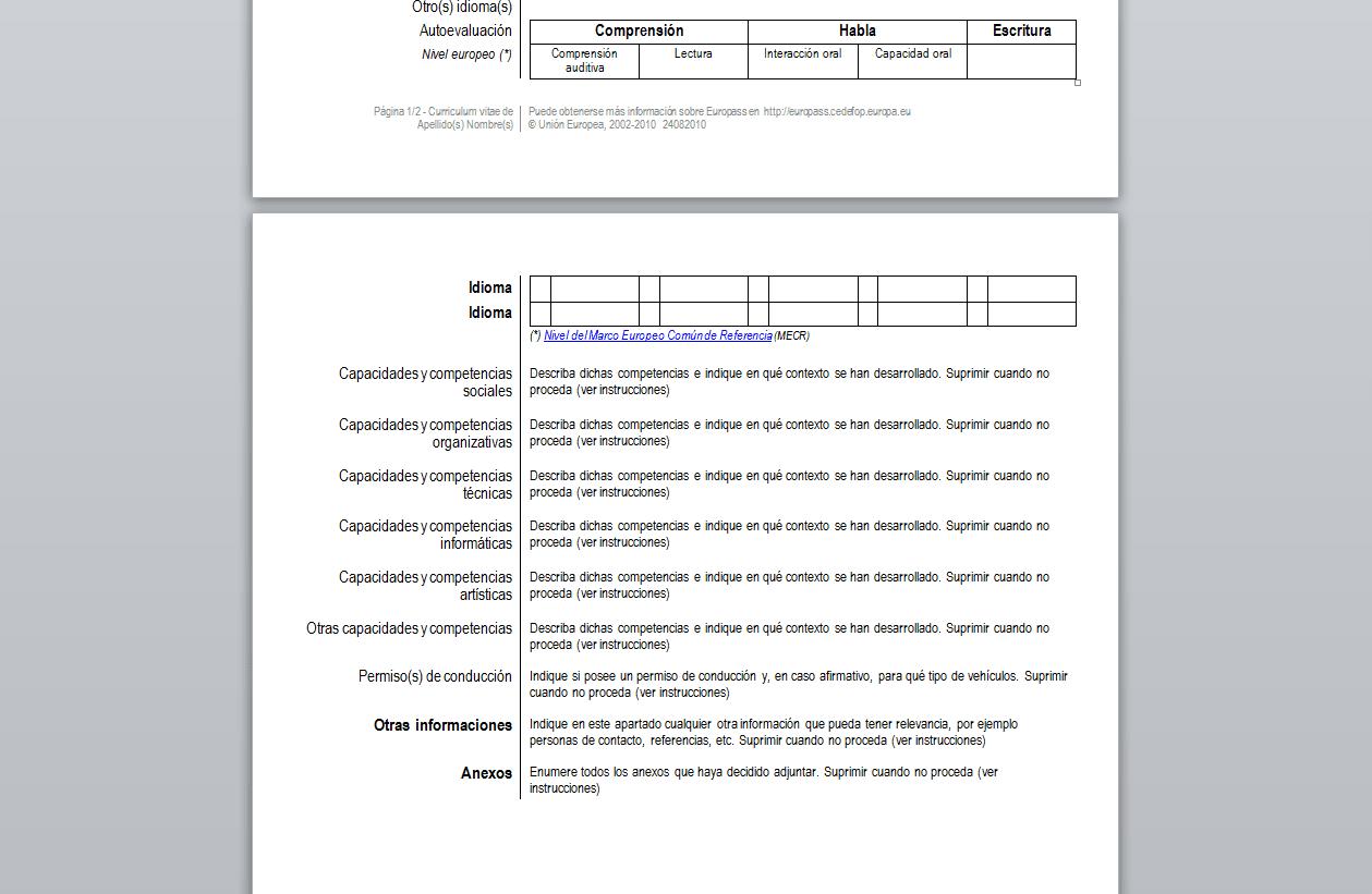 Curriculum Vitae En Word