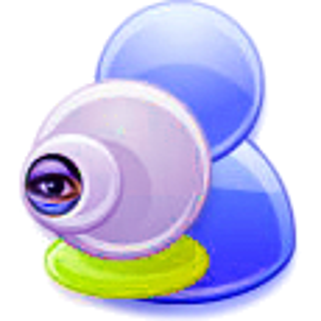 Webcam Surveillance Standard