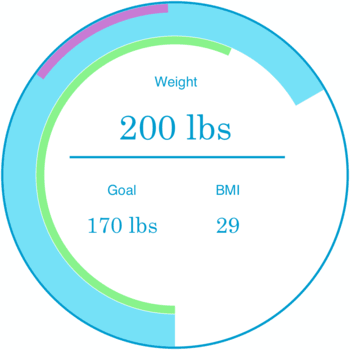 Weight Diary Light 1.01
