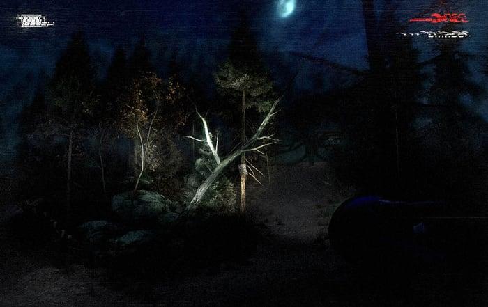 Slender: The Arrival