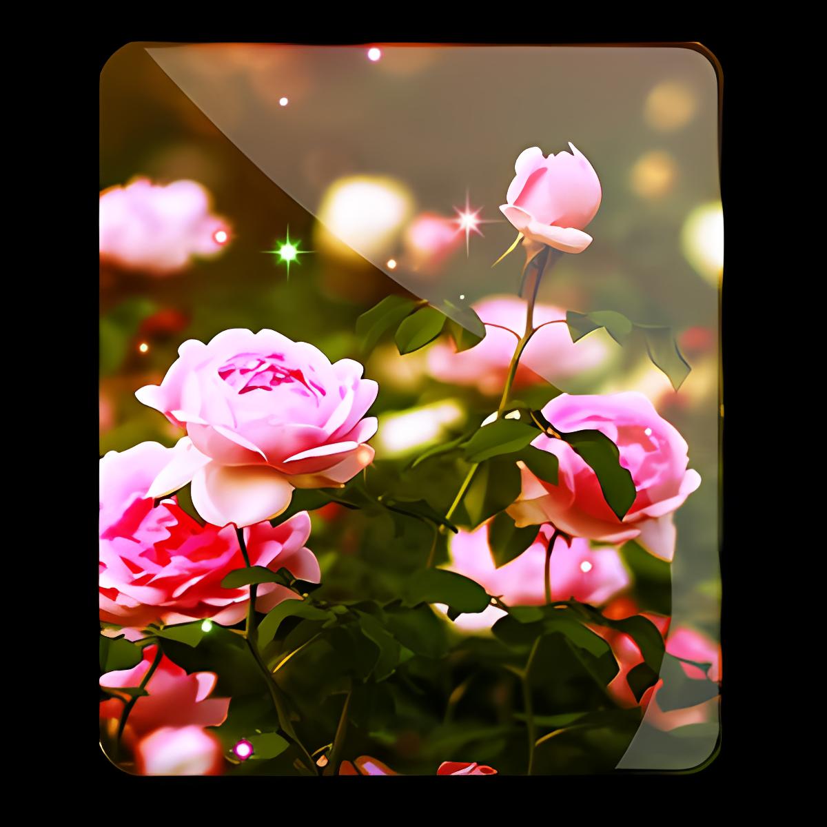 Flower Roses Wallpaper