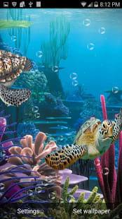 3D Sea Turtles Live Wallpaper
