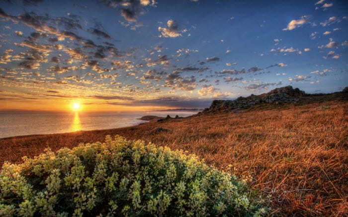 Tema Beach Sunsets