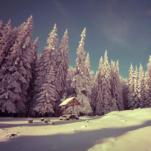 Snowfall Live Wallpapers