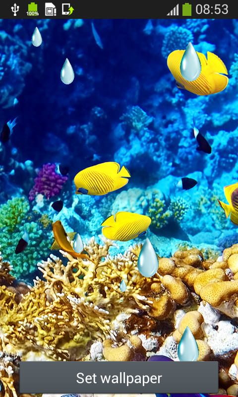 Sea Creatures Live Wallpapers