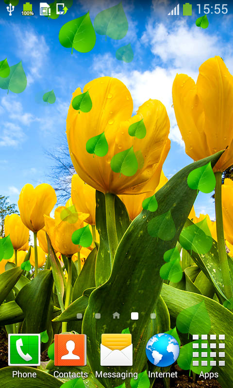 Tulips Live Wallpapers