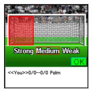 Penalty Kick!