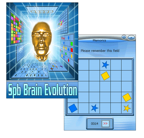 SPB Brain Evolution