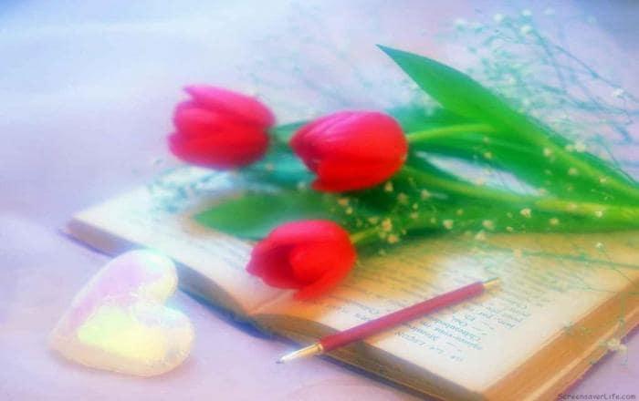 Free Valentine's Day Screensaver