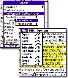 QED - DOC editor