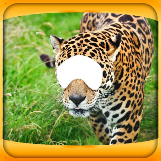 Animal Photo Montage Editor
