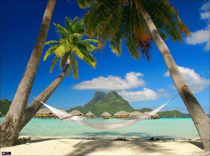 Caribbean Dream 3