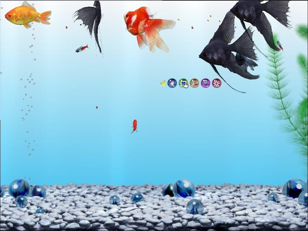 Aquazone GoldFish Pack