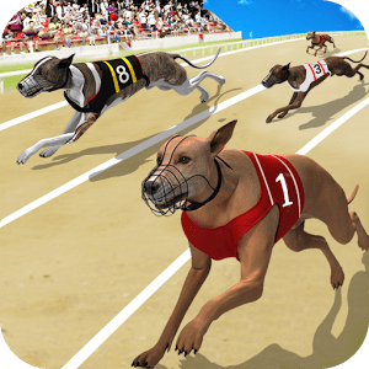 Dog Crazy Race Simulator 1.0
