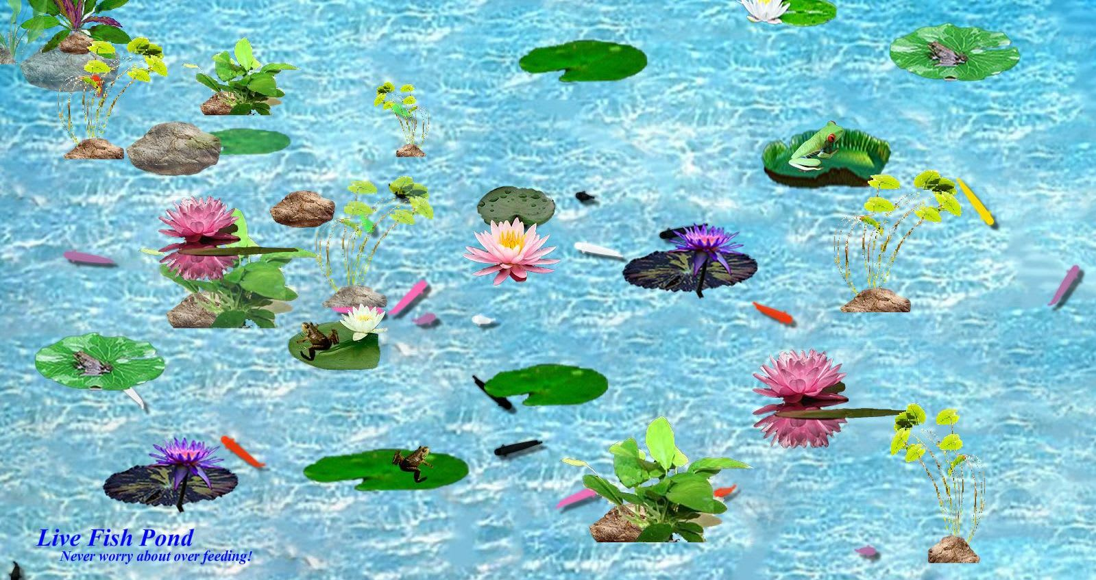 Interactive Fish Pond Game