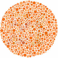 Teste de Daltonismo (Colorblind Test) 1.0.0
