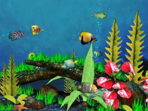 Fish Aquarium 3D Screensaver