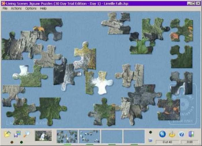 Living Scenes Jigsaw Puzzles