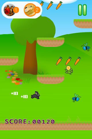 Rabbit Jumps