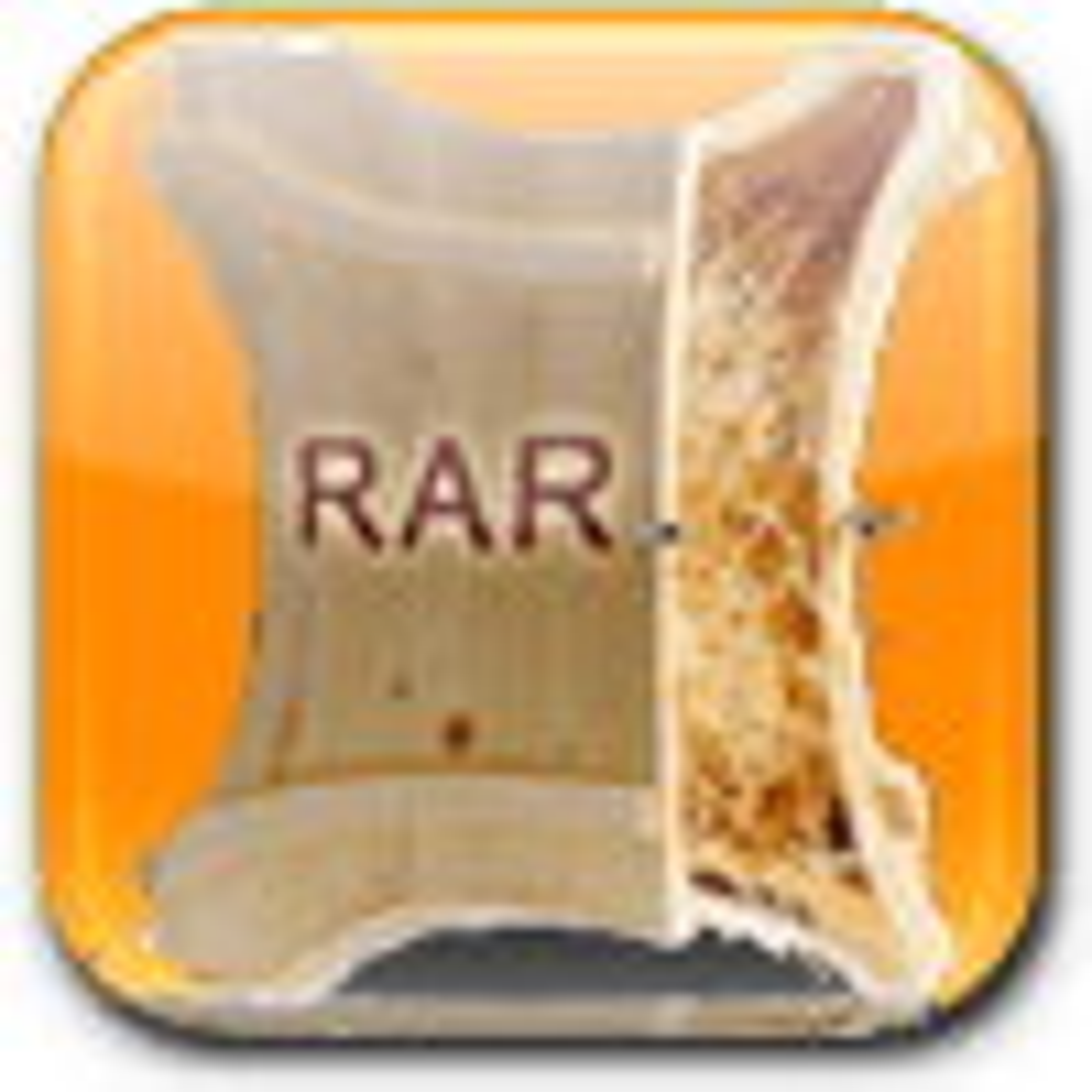 RAR Expander 0.8.5 Beta 4