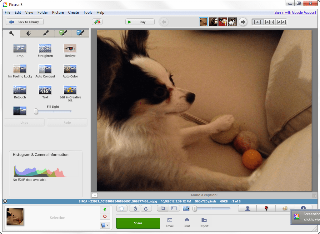 Opinions about Picasa