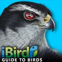 iBird Guide to Birds of North America
