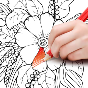 Colorfit - Coloring & Drawing