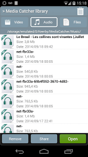 Download Video Audio Files
