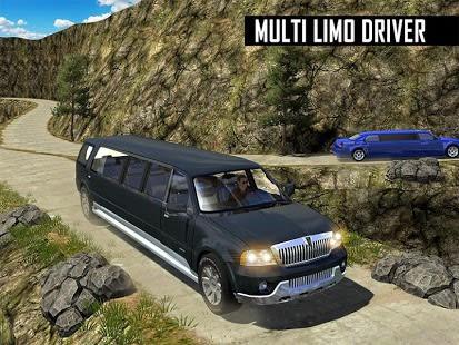 Big City Limo Car Driving