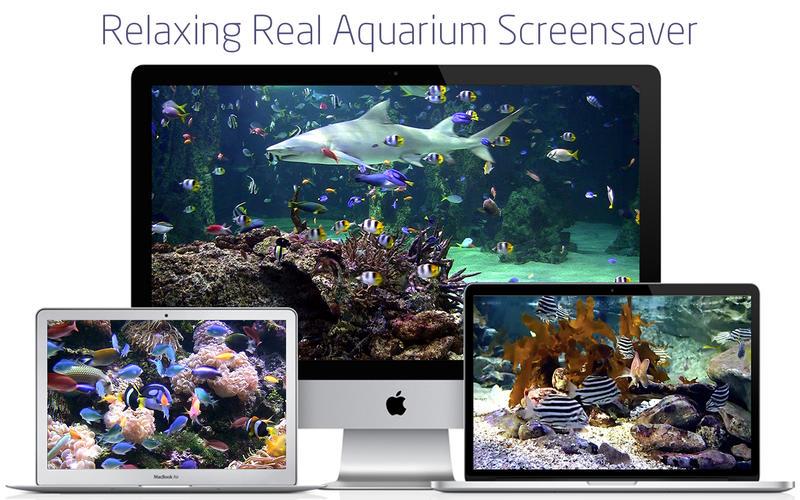 Aquarium live lite: Relaxing screensaver & Clock