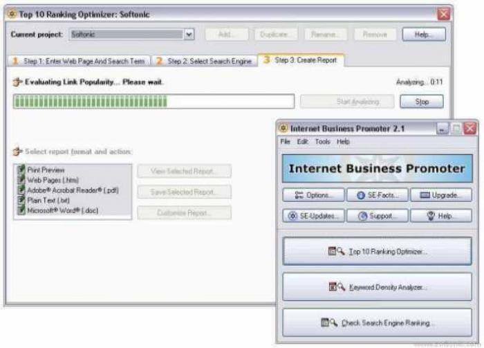 Internet Business Promoter (IBP)