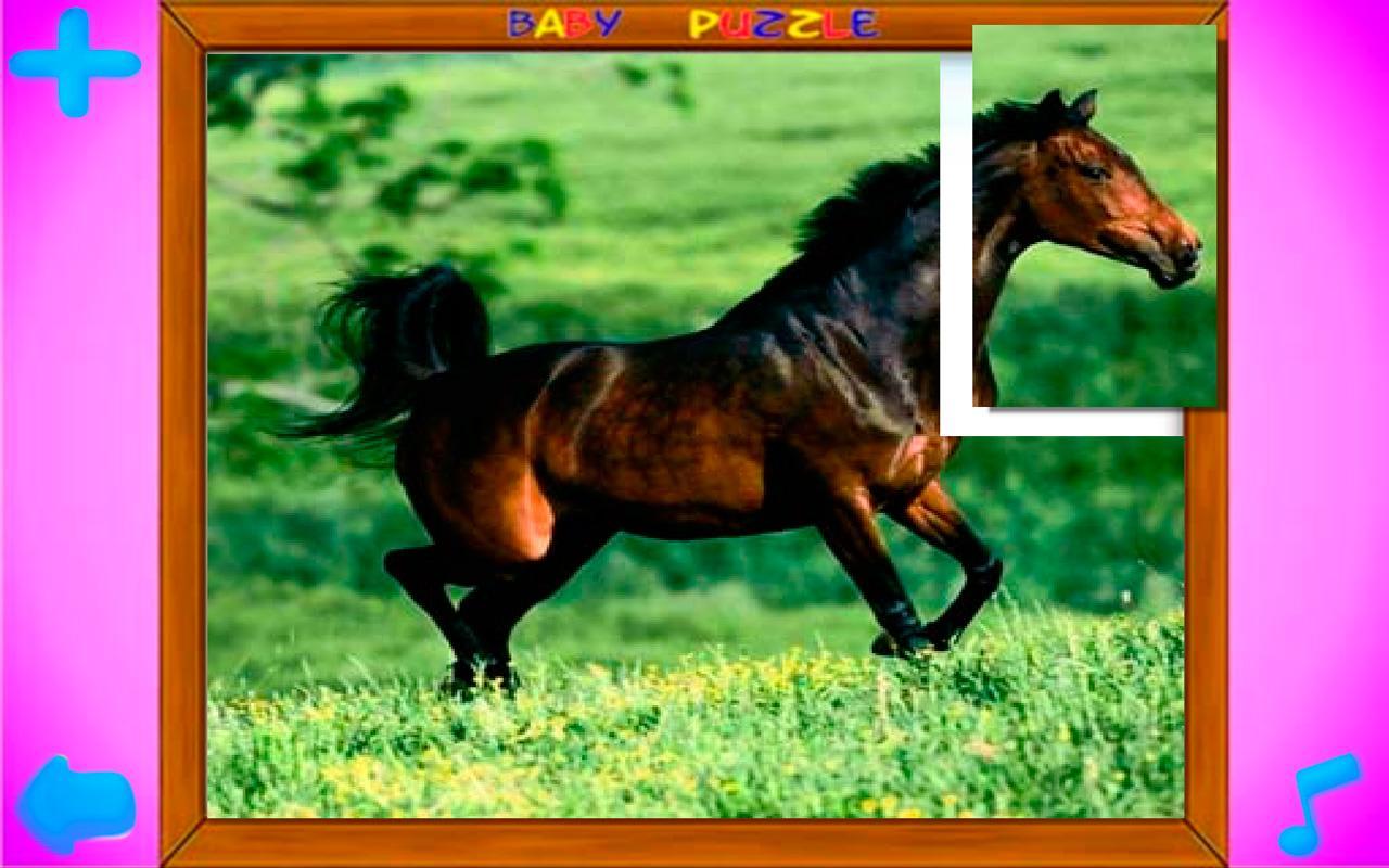Puzzles de Animales