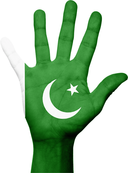 Pakistan Flag Face Photos 2016