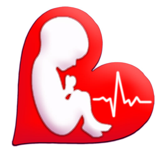 Baby Beat™ Heartbeat Monitor 3.6