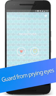 Privacy Filter Pro