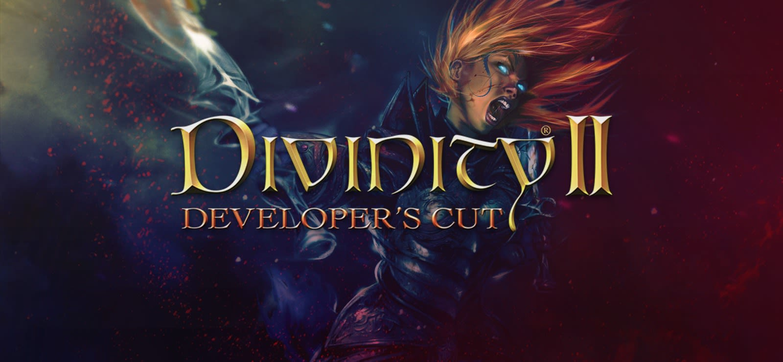 Divinity 2: Developer'S Cut