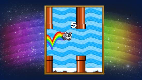 Rainbow gato