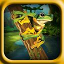 Frog Eye Fall