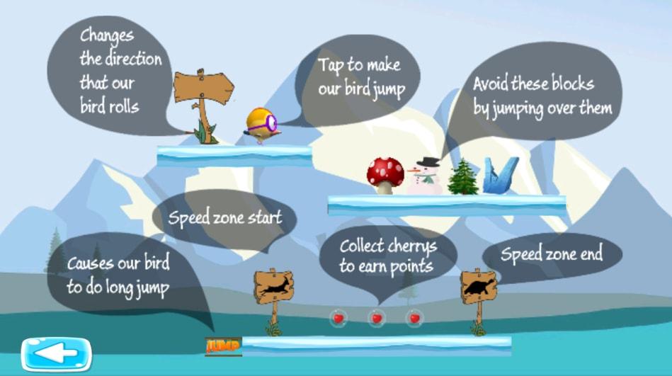 Hopping Bird iceland adventure