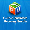 Password Unlocker Bundle Standard