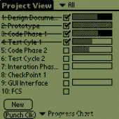 Project Punch