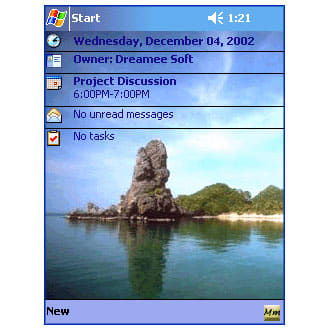 DS Memory Manager