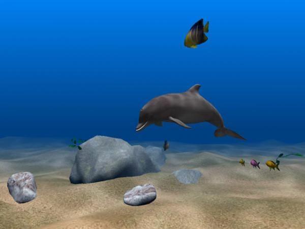 Dolphin Aqua Life 3D Screensaver 3.0.3   System Themes