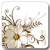 White Abstract Flowers Theme