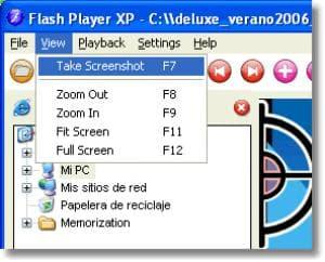 Flash Player XP