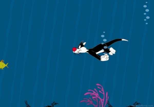 Looney Toons Fishes Screensaver